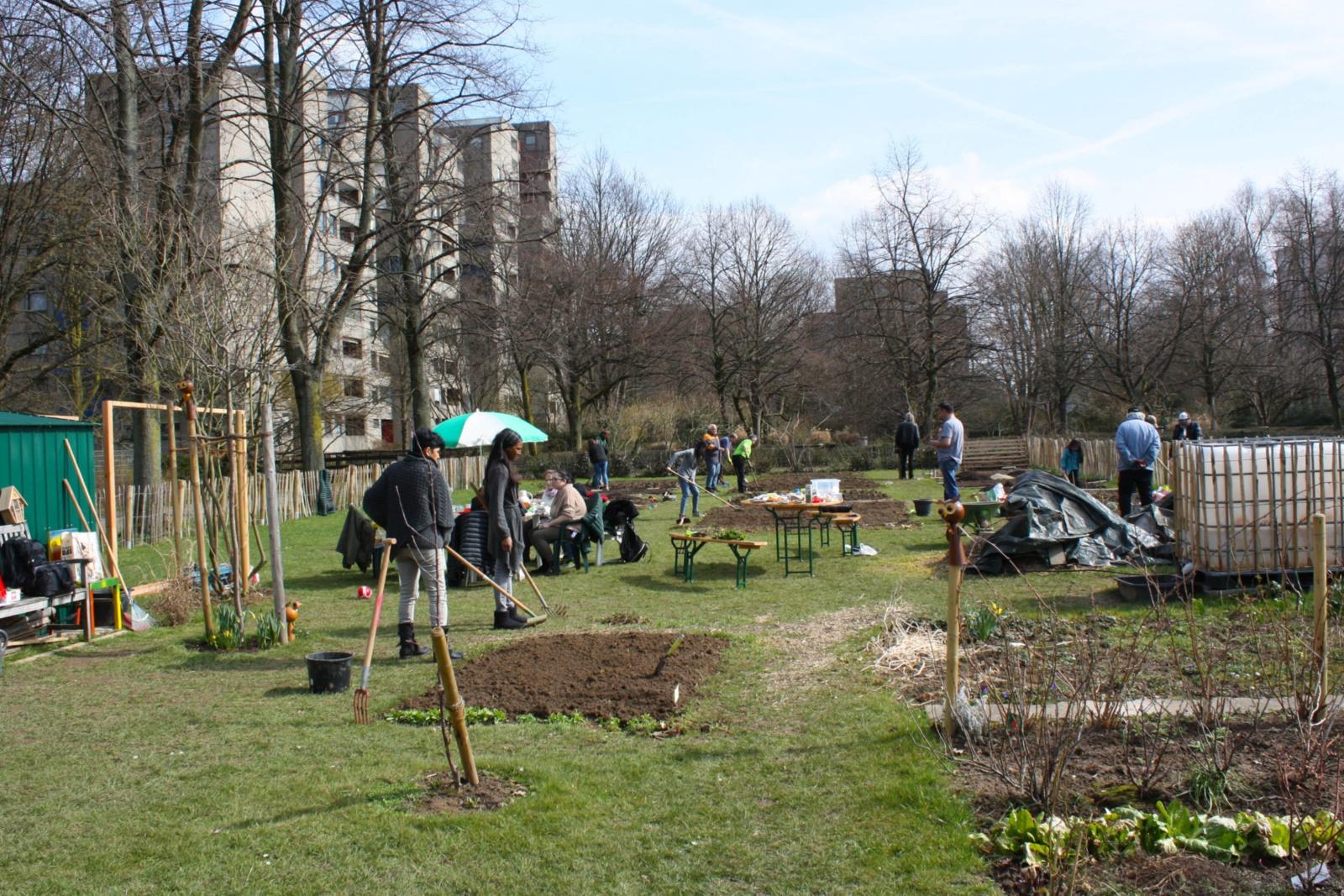 Gärtner Ratingen gemeinschaftsgarten startet ins zweite pflanzjahr